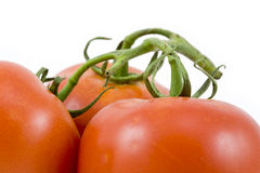 The Three Tomatoes Royalty Free Stock Photography