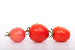 Three tomatoes. On White background Stock Photography