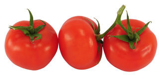 Three tomatoes Stock Images