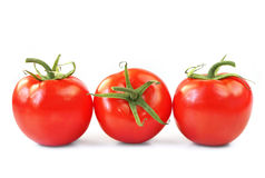 Three Tomatoes Stock Photos