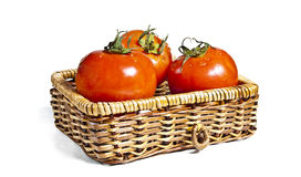 Three tomatoes in basket. On white background Stock Images