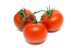Three tomatoes on branch Stock Photos