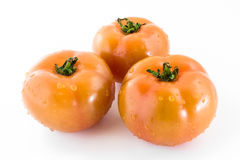 Three tomatoes Royalty Free Stock Photos