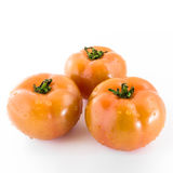 Three tomatoes Royalty Free Stock Photography