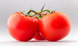Three tomatoes isolated on white Royalty Free Stock Photo