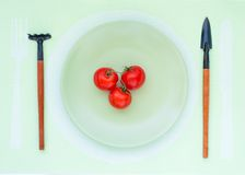 Three tomatoes lie on a plate Royalty Free Stock Image