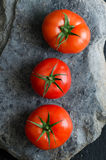 Three tomatoes Royalty Free Stock Images
