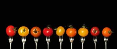 Three tomatoes Royalty Free Stock Photo