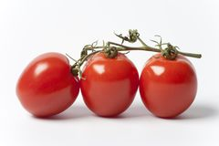 Three Tomatoes On A Vine On White Background Royalty Free Stock Photo
