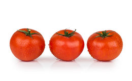 Three tomatoes in water droplets on white Royalty Free Stock Images