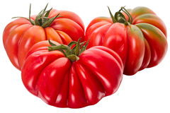 Three tomatoes on a white Stock Photography