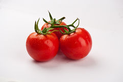 Three tomatos. The close-up of three linked tomatos Royalty Free Stock Photos