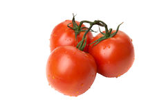 Three tomatos. Three red tomato isolated on white Stock Photos