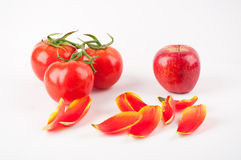 Three tomatos and an apple. The close-up of three linked tomatos and an apple and some tulip petals Stock Image