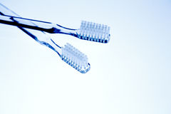 Three tooth brushes Royalty Free Stock Photo