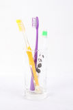 Three toothbrush. In a glass with white background stock image