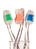 Three toothbrushes stock photography
