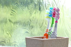 Three toothbrushes in a clay tumbler in the light of an obscured window Stock Photos