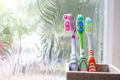 Three toothbrushes in a clay tumbler in the morning light Stock Photo