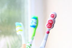 Three toothbrushes in the early morning light royalty free stock photos
