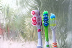Three toothbrushes in the early morning light stock image