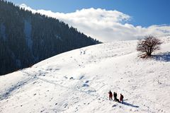 Three tourists and dog in winter mountains Stock Image