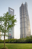 Three towers: Jin Mao, new Shanghai Tower and Shanghai World Financial Center at Lujiazu Royalty Free Stock Photo