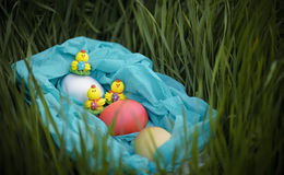 Three toy chickens and three easter eggs on the grass in a blue basket Royalty Free Stock Images