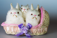 Three toy rabbits in a basket Royalty Free Stock Photos