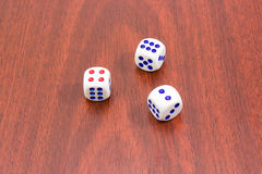 Three traditional six-sided dice on wooden surface. Three traditional plastic white six-sided dice with red and blue dots and rounded corners on wooden surface Stock Image
