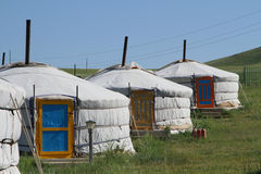 Three traditional yurts Royalty Free Stock Photo