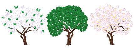 Three tree. Stock Photo