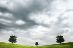 Three trees. And dark cloudy sky Royalty Free Stock Photos