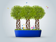 Three trees in a pot 2 Royalty Free Stock Images