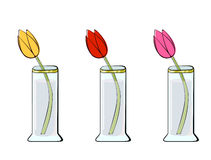 Three Tulips. Three color variants of a tulip in a vase royalty free illustration
