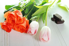 Three tulips on a white background Royalty Free Stock Photo