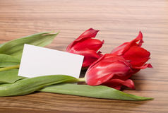 Three tulips with white card Royalty Free Stock Image