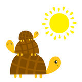 Three turtle tortoise pyramid. Yellow sun. Cute cartoon character family set. Father, mother, baby. Pet animal collection.. Education cards for kids. White Stock Photography