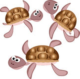 Three turtles Royalty Free Stock Photos