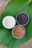 Three type of organic rice in cup Stock Photo
