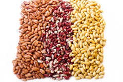 Three types of beans. On white background stock photo