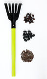 Three types of black seeds and a rake on a white background Royalty Free Stock Photo