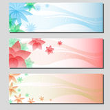 Three types of floral colorful banner cards Royalty Free Stock Photo