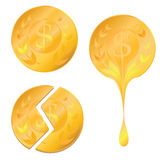 Three types of golden coin Royalty Free Stock Image