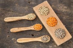 Three types of lentils - Lens culinaris Stock Images