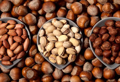 Three types of nuts Royalty Free Stock Photo