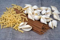 Three types of pasta Royalty Free Stock Image