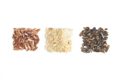 Three Types of Rice in Square Piles Royalty Free Stock Photo