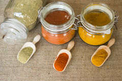 Three types of spices. On scoops with jars on background stock image