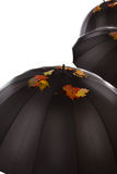 Three umbrellas with leaves on it Stock Photo